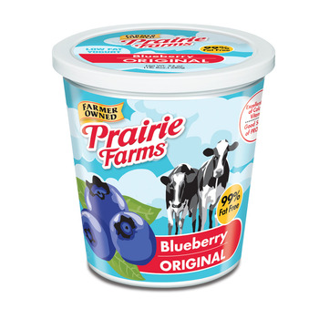 Yogurt Blueberry 5lb
