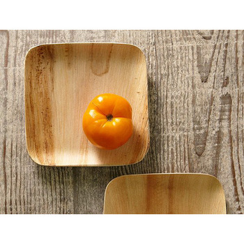 Verterra 8 In. Square Plates