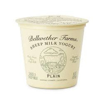 Bellwether Yog Sheep Plain