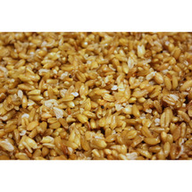 Freekeh Whole Grain Wheat
