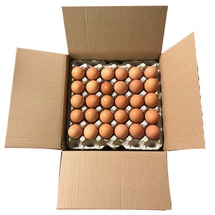 Eggs Organic Brown Xlarge