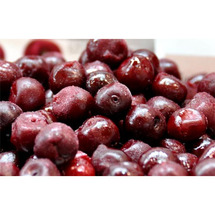 Red Sour Morello Cherries
