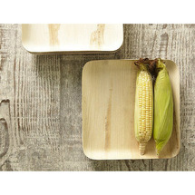 Verterra 9 In. Square Plates